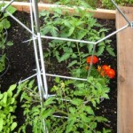 How To: Make Tomato Ladders from the IKEA Salvia Trellis