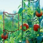 Tomato Ladders from Gardener's Supply