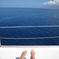 Yacht Sailing!
