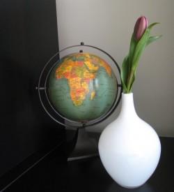 tulips-globe