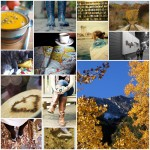 81 Things To Love About Fall