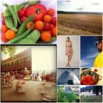 Weekly Love: Sauvie Island + Liam Finn + Sundresses