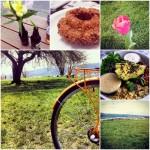 Spring + Wafu Ramen + Arrietty = Weekly Love