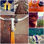Favorite Places + Biking + Rain = Weekly Love